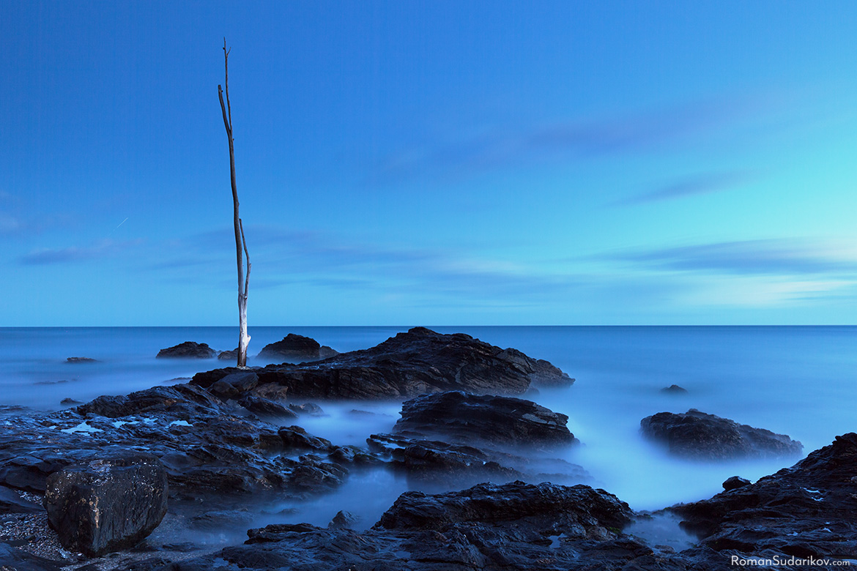Последний свет дня освещает одинокое сухое дерево, стоящее на камнях берега. Из-за длинной выдержки волны кажутся туманом вокруг камней. Снимок сделан сразу после захода солнца на пляже Плая де ла Виборилья, расположенном в Бенальмадене. Коста дель Соль, Испания.